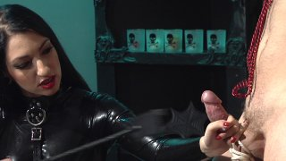 Screenshot #23 from Cybill Troy Is Vicious